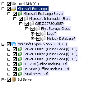 Automatically lists all available data based on the backup type you selected
